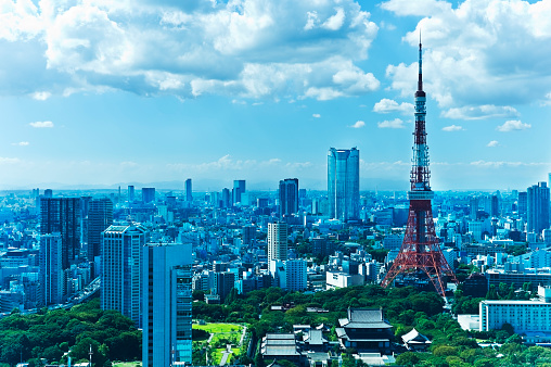 Tokyo Tower「Tokyo Tower」:スマホ壁紙(14)