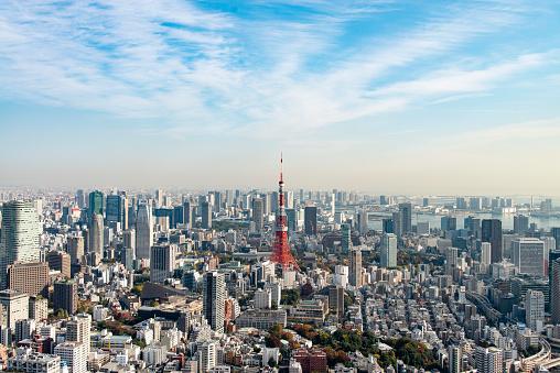 Minato Ward「Tokyo Tower」:スマホ壁紙(17)