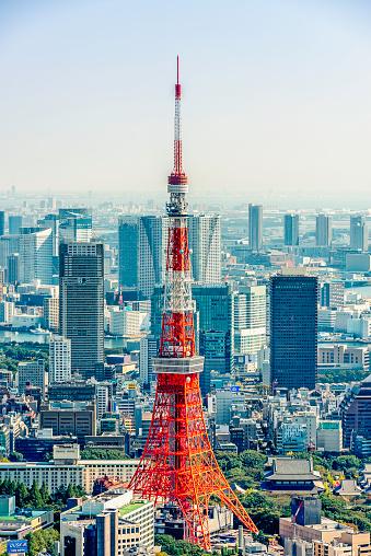 Minato Ward「Tokyo Tower」:スマホ壁紙(8)