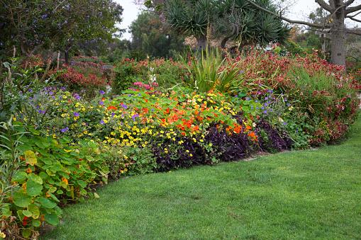 庭園「ガーデン」:スマホ壁紙(5)
