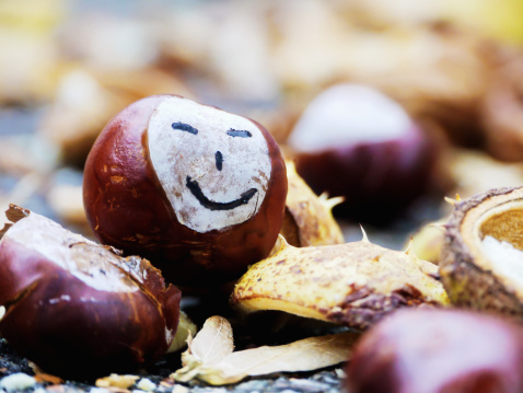 栗「Autumn happy chestnut」:スマホ壁紙(18)