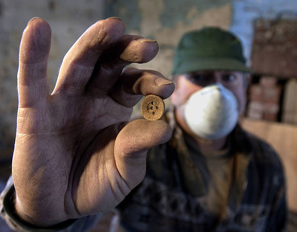 Georgia Undertakes Archaeological Dig Of Slave Quarters:ニュース(壁紙.com)