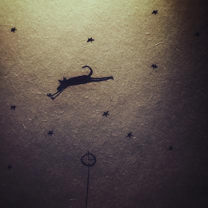 star sky「星空を飛ぶ犬」:スマホ壁紙(14)