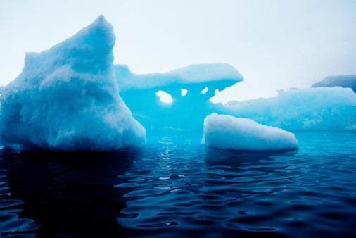 Eco Tourism「Iceberg」:スマホ壁紙(5)