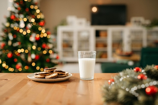 Biscuit「Milk and cookies for Santa Claus」:スマホ壁紙(12)