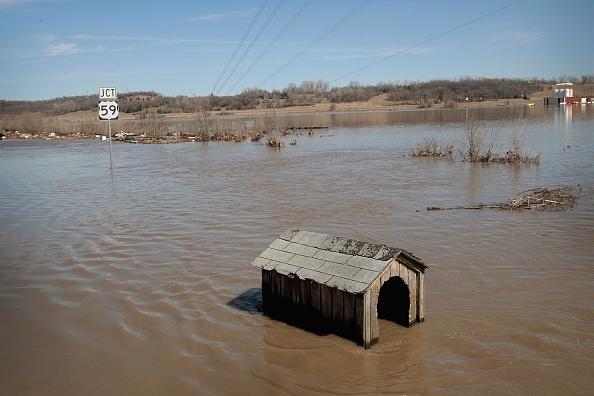 座る「Flooding Continues To Cause Devastation Across Midwest」:写真・画像(4)[壁紙.com]