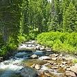 ペイエット国立森林壁紙の画像(壁紙.com)