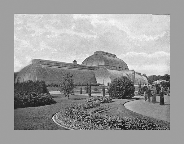 Kew Gardens「The Great Palm House, Kew Gardens, London, C1900」:写真・画像(17)[壁紙.com]