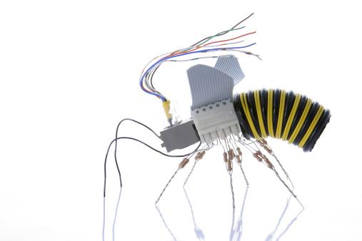 CPU「Electronic  Wasp [profile]」:スマホ壁紙(12)