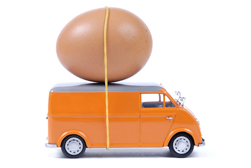 Animal Egg「express service」:スマホ壁紙(1)