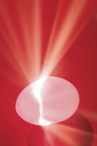 Animal Egg「Eggshell splitting with light shining from crack」:スマホ壁紙(14)