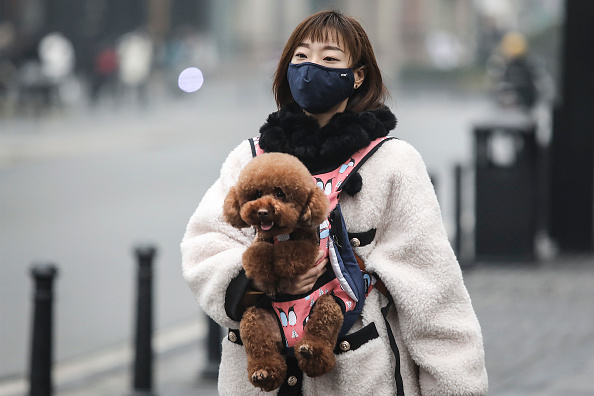 Surgical Mask「Coronavirus Pneumonia Outbreaks In China」:写真・画像(9)[壁紙.com]
