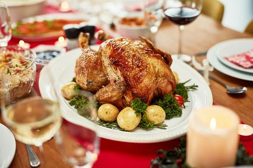 Turkey - Bird「Never say no to a roast dinner!」:スマホ壁紙(5)