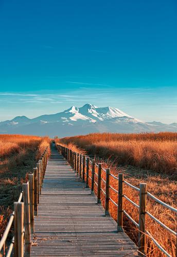Relaxation「Reeds and Bridge」:スマホ壁紙(0)