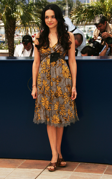 60th International Cannes Film Festival「Cannes - My Blueberry Nights - Photocall」:写真・画像(2)[壁紙.com]
