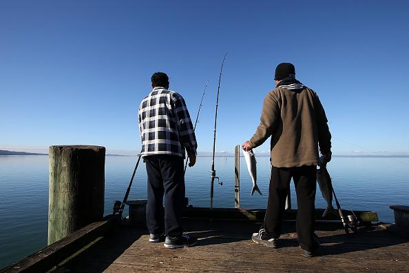 Waiting「Aucklanders Make Most Of Sunny Weather At Cornwallis Peninsula」:写真・画像(15)[壁紙.com]