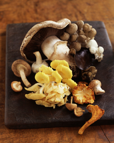 Wood ear「Assorted mushrooms」:スマホ壁紙(0)