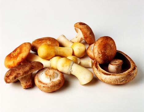 栗「Assorted mushrooms」:スマホ壁紙(6)
