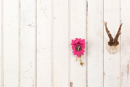 Tradition「Deer antler and pink cuckoo clock hanging on white wooden wall」:スマホ壁紙(9)
