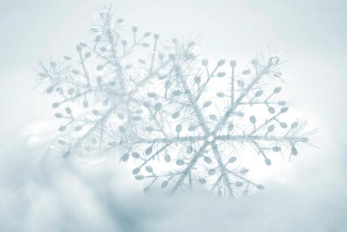 雪の結晶「雪の結晶」:スマホ壁紙(15)