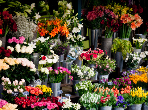 Flower Shop「Paris, France.」:スマホ壁紙(19)