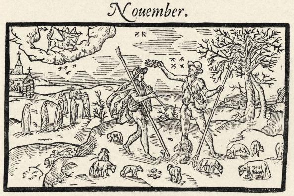 November「Edmund Spenser - English poet - 'The Shepherd 's Calendar' - illustration - 'November' - 1597」:写真・画像(6)[壁紙.com]