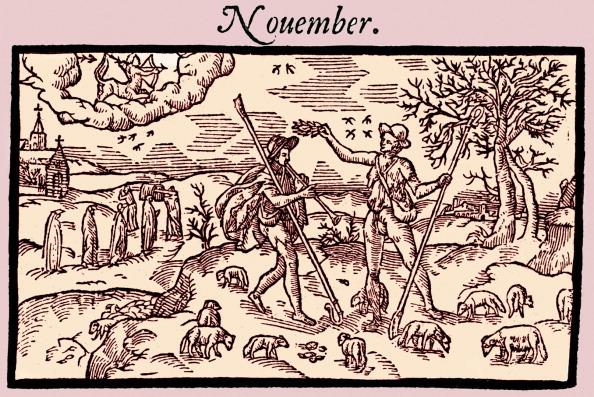 November「Edmund Spenser - English」:写真・画像(5)[壁紙.com]
