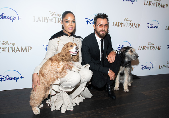 "上映会「Disney+'s ""Lady And The Tramp"" New York Screening」:写真・画像(16)[壁紙.com]"