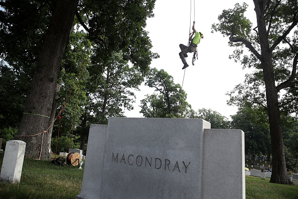 クライミング「Landscapers And Volunteers Spend Day Renewing Arlington National Cemetery」:写真・画像(4)[壁紙.com]