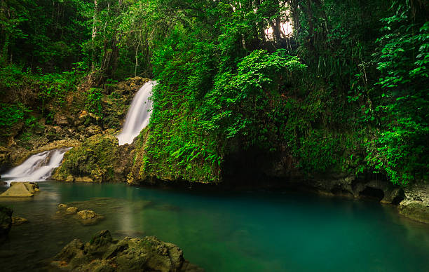 id175172728jamaica tropical waterfall jamaica tropical waterfall voltagebd Image collections