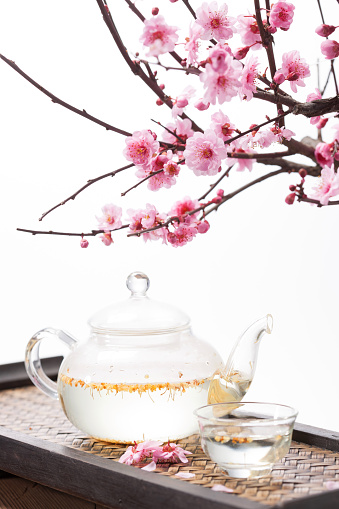 梅の花「The plum blossom and tea set」:スマホ壁紙(10)