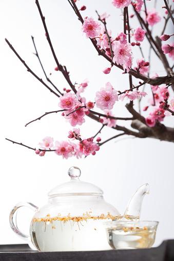 梅の花「The plum blossom and tea set」:スマホ壁紙(0)
