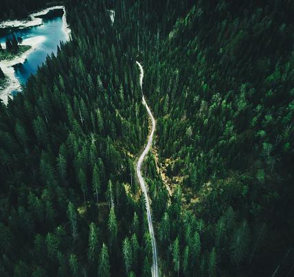 常緑樹「スイスの夏森林空中写真」:スマホ壁紙(18)