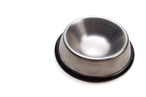 Eating「Empty Dog Dish」:スマホ壁紙(14)