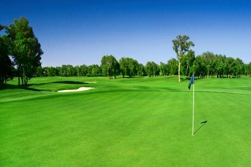 Green Color「Scenic photograph of a golf course」:スマホ壁紙(14)