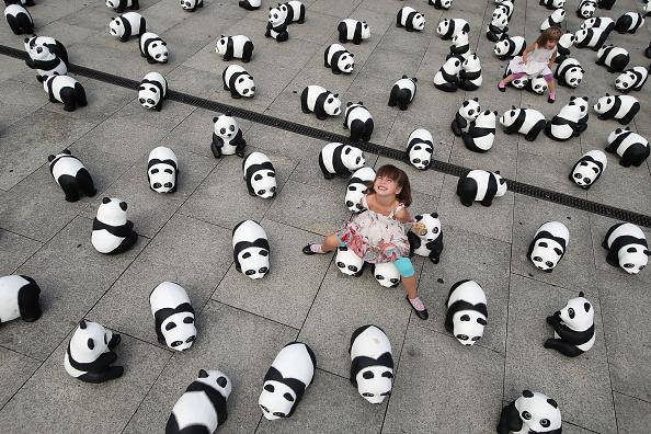 World Wildlife Fund「1,600 Panda Sculptures Highlight World Wilflife Fund 50th Anniversary」:写真・画像(1)[壁紙.com]