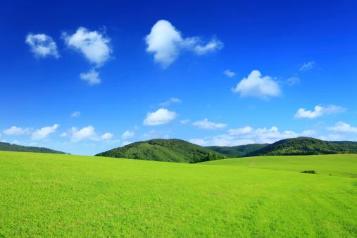 緑色「山の景観の XXXL グリーンフィールド」:スマホ壁紙(16)