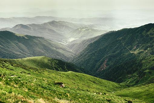 Carpathian Mountain Range「Mountain landscape」:スマホ壁紙(16)
