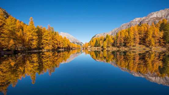 Graubunden Canton「Mountain lake with larch trees in autumn, Preda, Lake Palquognasee, Lai da Palquogna, Albula-Pass, Grisons, Switzerland, European Alps」:スマホ壁紙(9)