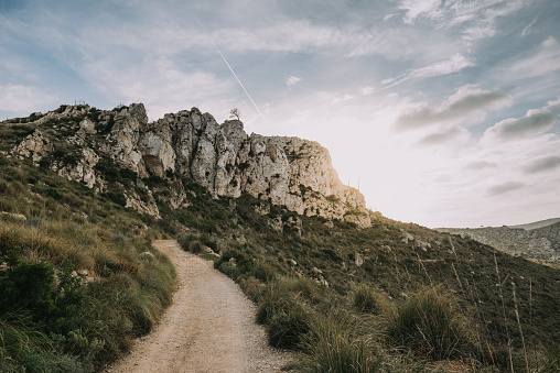 Single Tree「Mountain Landscape, Mallorca, Spain」:スマホ壁紙(10)