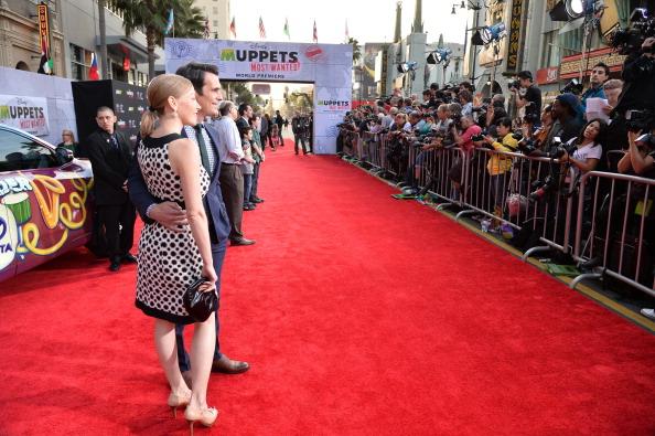 "El Capitan Theatre「Premiere Of Disney's ""Muppets Most Wanted"" - Red Carpet」:写真・画像(13)[壁紙.com]"