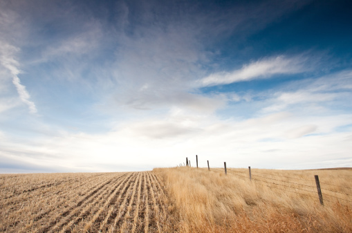 Fence「Great Plains in Alberta Canada」:スマホ壁紙(12)