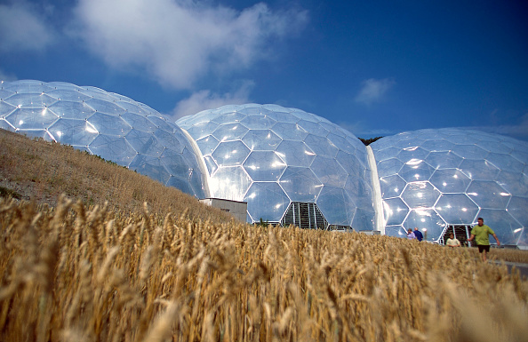 Cereal Plant「Domes at the Eden Project. Bodelva, St Austell, Cornwall, United Kingdom. Designed by Nicholas Grimshaw and Partners.」:写真・画像(9)[壁紙.com]