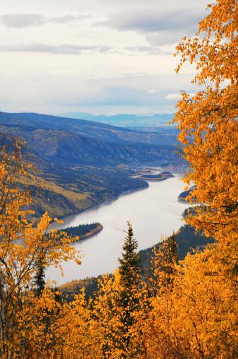 Yukon「Yukon River:View  from Midnight Dome,Dawson City,Yukon,Canada.」:スマホ壁紙(6)