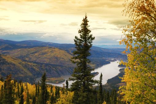 Yukon「Yukon River:View from  Midnight Dome Lookout ,Dawson City,Yukon,Canada.」:スマホ壁紙(15)