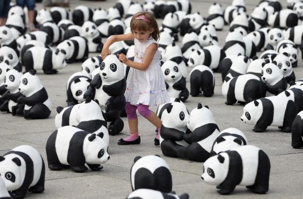World Wildlife Fund「1,600 Panda Sculptures Highlight World Wilflife Fund 50th Anniversary」:写真・画像(0)[壁紙.com]