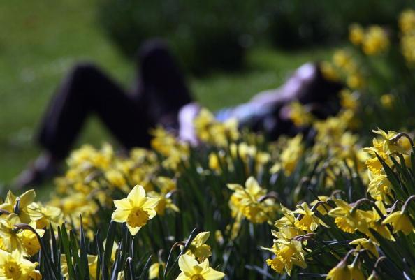 Springtime「Spring Has Sprung In London」:写真・画像(11)[壁紙.com]