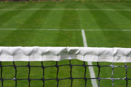 テニス「芝生コートでテニスの攻撃からネットポジション」:スマホ壁紙(1)