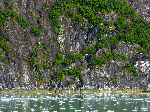 Glacier Bay National Park「Glacier Bay」:スマホ壁紙(17)