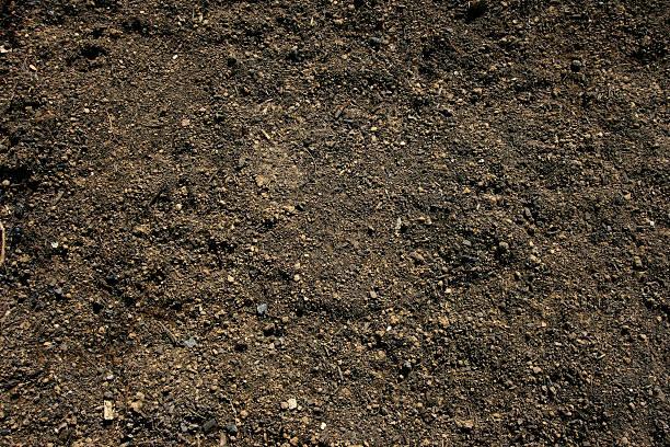 Topsoil background:スマホ壁紙(壁紙.com)